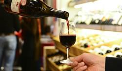 Bestbewertete Rotweine