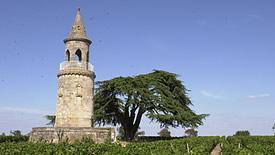 Rotwein aus der Region Bordeaux