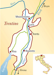 Teroldego Rotaliano Italien