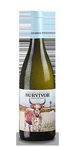 SURVIVOR Sauvignon Blanc 2020