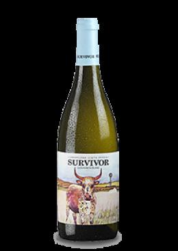 SURVIVOR Sauvignon Blanc 2019
